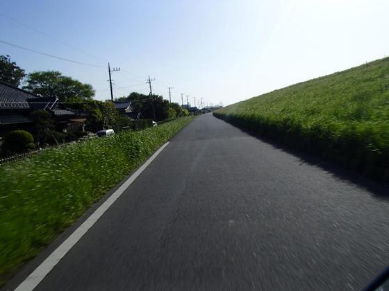 0508-01.JPG