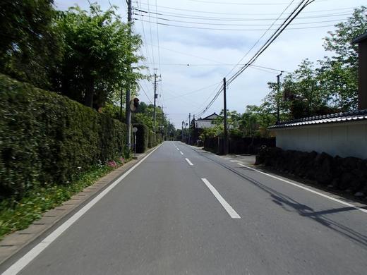 P5030004.JPG